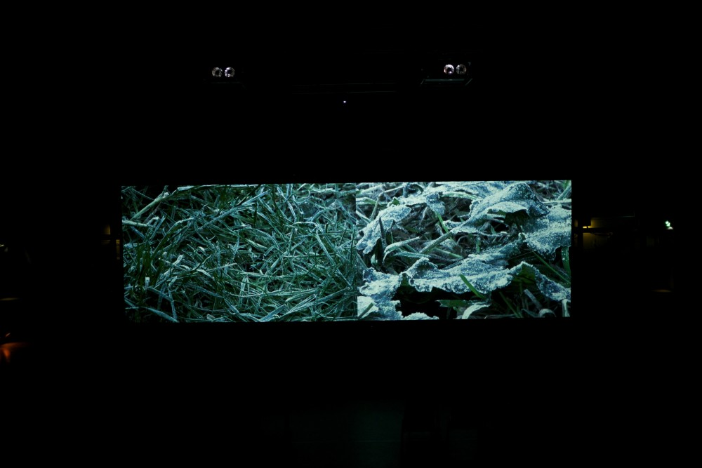 On the screen, there is an image of frost covered grass.