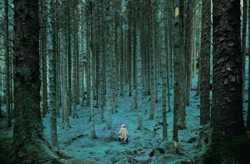 A photograph of a forest, altered so the colour is unnatural and blue. A figure in a white cloak walks into the trees.